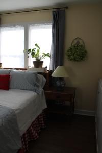 guest room 019